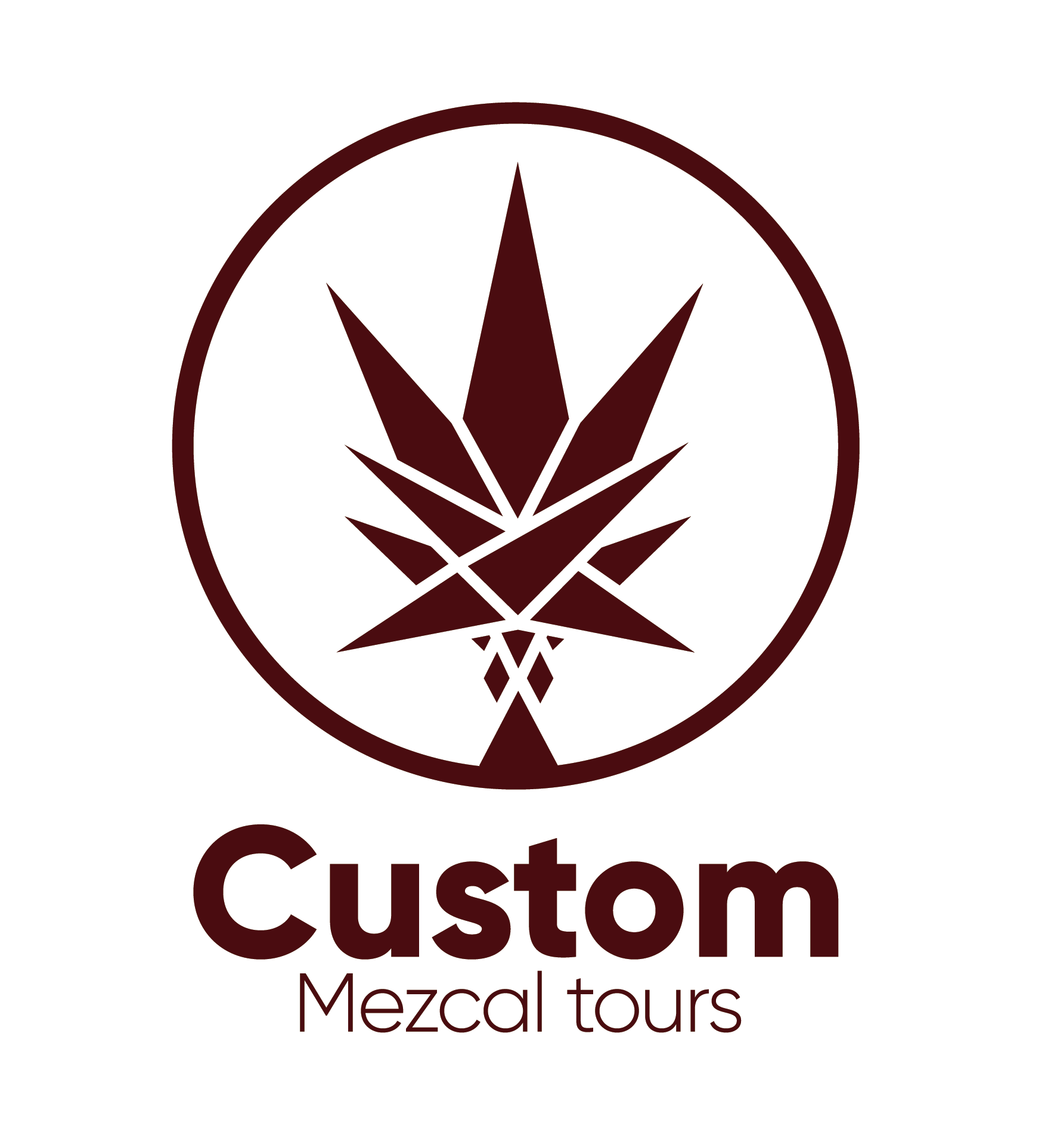 Custom Mezcal Tours